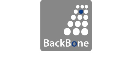 Logo of BackBone Aviation