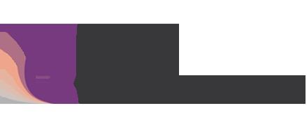 AMJ_AmericanJet_Logo